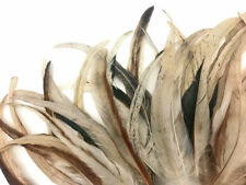 """1 Pack -  10-14"""" Natural Beige Mix Coque Tail Strung Rooster Feathers 0.25 Oz."""