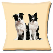 """Two Border Collie Dogs 16""""x16"""" 40cm Cushion Cover Novelty Photo Print on Cream"""