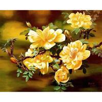 40x50cm DIY Painting By Numbers Kit Beautiful Flower Digital Oil Painting R1BO