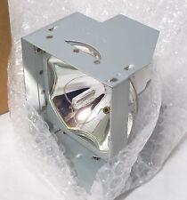 Projection Lamp PLC-LMP12 610 265 8828 New