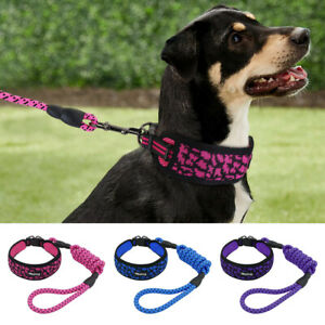 Wide Mesh Padded Dog Collar and Leash Set for Small Medium Large Dogs Reflective