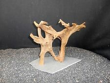 MOUNTED DRIFTWOOD FOR FISH AQUARIUMS REPTILE GARDEN DECOTATION TANK TAXIDERMY
