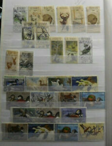 U.S.A. Early & Old Hunting & Duck Stamps, Used, Large Lot