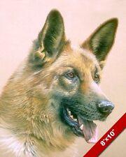 GERMAN SHEPHERD AKA ALSATIAN WOLF DOG ANIMAL PAINTING ART REAL CANVAS PRINT