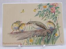 Villeroy & and Boch VILBOCARD A53 BIRDS Edith Holden UNUSED BL073