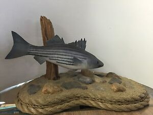 Hand Carved Striped Bass By Chris Kight