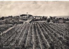 P1047  Alessandria  SANCRISTOFORO  Panorama