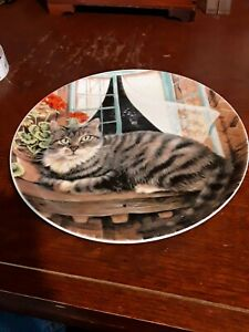 CAT PLATE USED VERY GOOD CONDITION  .