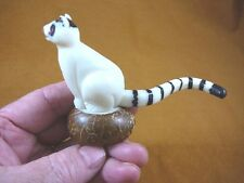 (TNE-LEM-369B) Lemur TAGUA NUT Figurine Carving Vegetable palm Madagascar lemurs