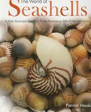 WORLD OF SEASHELLS Patrick Hook **GOOD COPY**