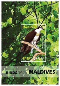 Maldives - Birds of Prey Stamp - Souvenir Sheet MNH