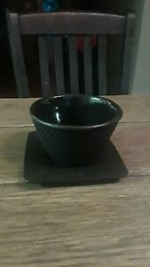 Iwachu Japanese Cast Iron Tea Cup Made in Japan with Saucer