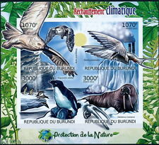 Imperf, Animals, Penguins Owl Birds, Sun, Protect Nature, BURUNDI 2012 MNH SS