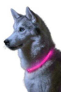 Auraglow Super Bright LED Light Up Dog Collar Flashing Safety Pet Leash