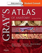 Gray's Atlas of Anatomy, 2e (Gray's Anatomy) New Paperback Book Richard Drake