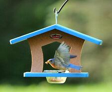 Kettle Moraine Single Recycled Cup Feeder Birdfeeder for Bluebirds Orioles