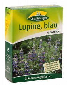 Quedlinburger 205606 Lupine blau, 500 g (Lupinensamen)