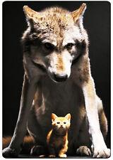 Wolf & Kitten fridge magnet.