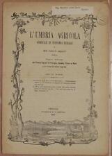 L'UMBRIA AGRICOLA 15 30 MAGGIO 1889 VINI ENOLOGIA AMBURGO OLIO BACHICOLTURA