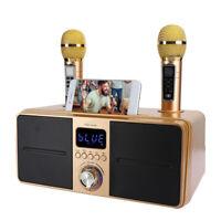 Dual Wireless Microphone Bluetooth Mobile Karaoke Wireless Stereo Speaker Top/