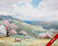 ENGLISH COUNTRYSIDE IN SPRING SHEEP & LAMB ENGLAND PAINTING ART CANVAS PRINT