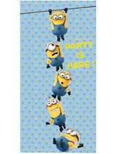 Despicable Me Lovely Minion The Party Is Here Birthday Door Banner Decoration