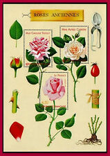 1991 FRANCE BLOC N°24** NEUF LUXE ROSES ANCIENNES, 1991 FRANCE ROSES SHEET