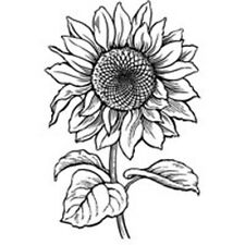 Stampendous Cling Rubber Stamp 14cm by 11cm Sunflower. Best