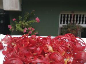 Ceylon NUTMEG MACE Herbs Spices Highest quality 100g