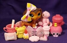 Authentic Littlest Pet Shop LPS Savannah Red Brown Dachshund #675 Gray Magnet
