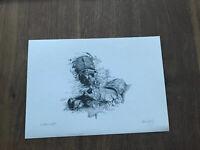 Signed by Glenn Irving LE 100 print of pencil sketch hippopotamus hippo
