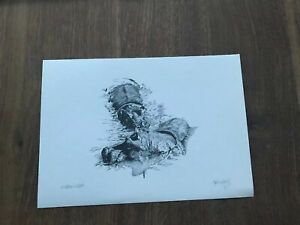 Signed by Glenn Irving LE 100 print of pencil sketch hippopotamus hippo
