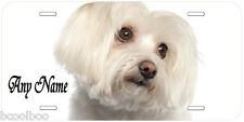 Maltese Dog Any Name Personalized Novelty Car License Plate A1