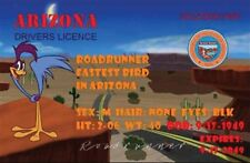 "ROADRUNNER DRIVERS LICENSE. 2 1/2"" X 4"" FRIDGE MAGNET. LOONEY TUNES."