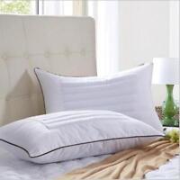 Luxury Bed Pillow Premium Fiber Fill Buckwheat Cover Queen Pillow Bedding New