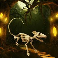 Halloween Animal Mouse Rat Skeleton Bones Prop Party Home Garden Yard Decor