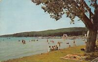 Walloon Lake Michigan~Folks at the Beach~Blanket Under Tree~Boats at Dock~1964
