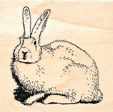 Stamp Cabana ~ RABBIT ~ Wood Mounted Rubber Stamp Bunny Easter Cute Animals