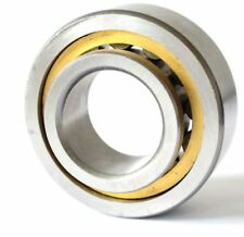 STEYR L46 NJ 221 E/TGP1/C3 18 Ball Bearing