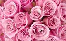Roses rose fleurs boutique imprimer cake topper Gaufrette Comestibles Papier Feuille A4 complet