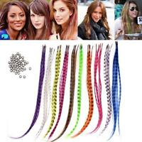 "HOT 50pcs Grizzly synthetic Feather hair Extensions 16"" with 50 beads for free Z"