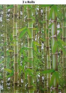 3 x 3D Effect Bamboo Photo Mural Wallpaper Jungle Tropical Trees Green Debona