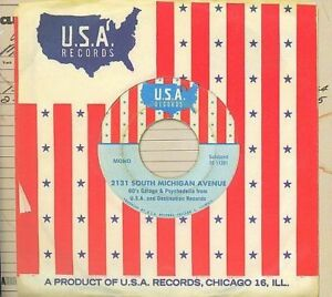 2131 South Michigan Avenue,60's Garage and Psychedelia from USA and..2 CD'S Mono
