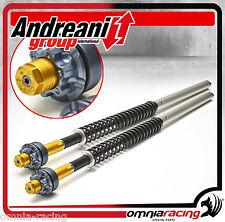 Kit Modifica Forcella Regolabile Andreani Group Cartridge Ducati Sport Classic