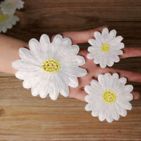 10PCS Embroidered Appliques Daisy Flowers Lace Trim Sewing On Patch Motifs DIY