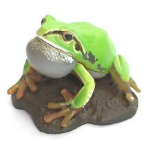 Choco Q Mini Figure Japanese Tree Frog Normal Kaiyodo Japan