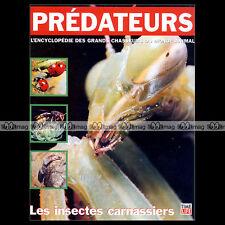 PREDATEURS N°21 ★ LES INSECTES CARNASSIERS ★ Grands chasseurs Mante religieuse..