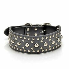 Pet Kingdom 18-24``Leather Studded Large Dog Collar Pet Collar(Black,Large)