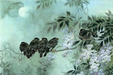 Incorniciato stampa-VINTAGE ORIENTAL Stile Uccelli in piedi su una derivazione (FOTO POSTER