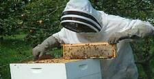 Bee Keeping 30 Books CDROM Raw Honey Homesteading BeeKeeper Hive Apiculture Bees